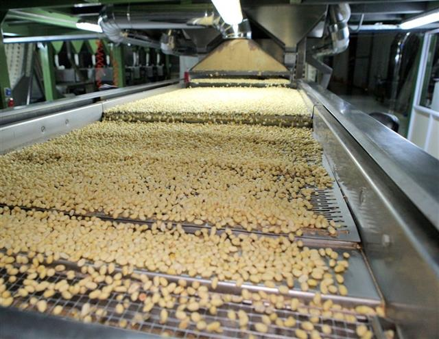 Premium: las plantas argentinas son más modernas y tecnificadas que las norteamericanas