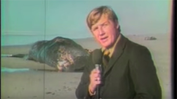 Paul Linnman y un camarógrafo cubrieron la noticia para una televisora local en 1970. Décadas después, el video se volvió viral. Foto: The Exploding Whale/YouTube